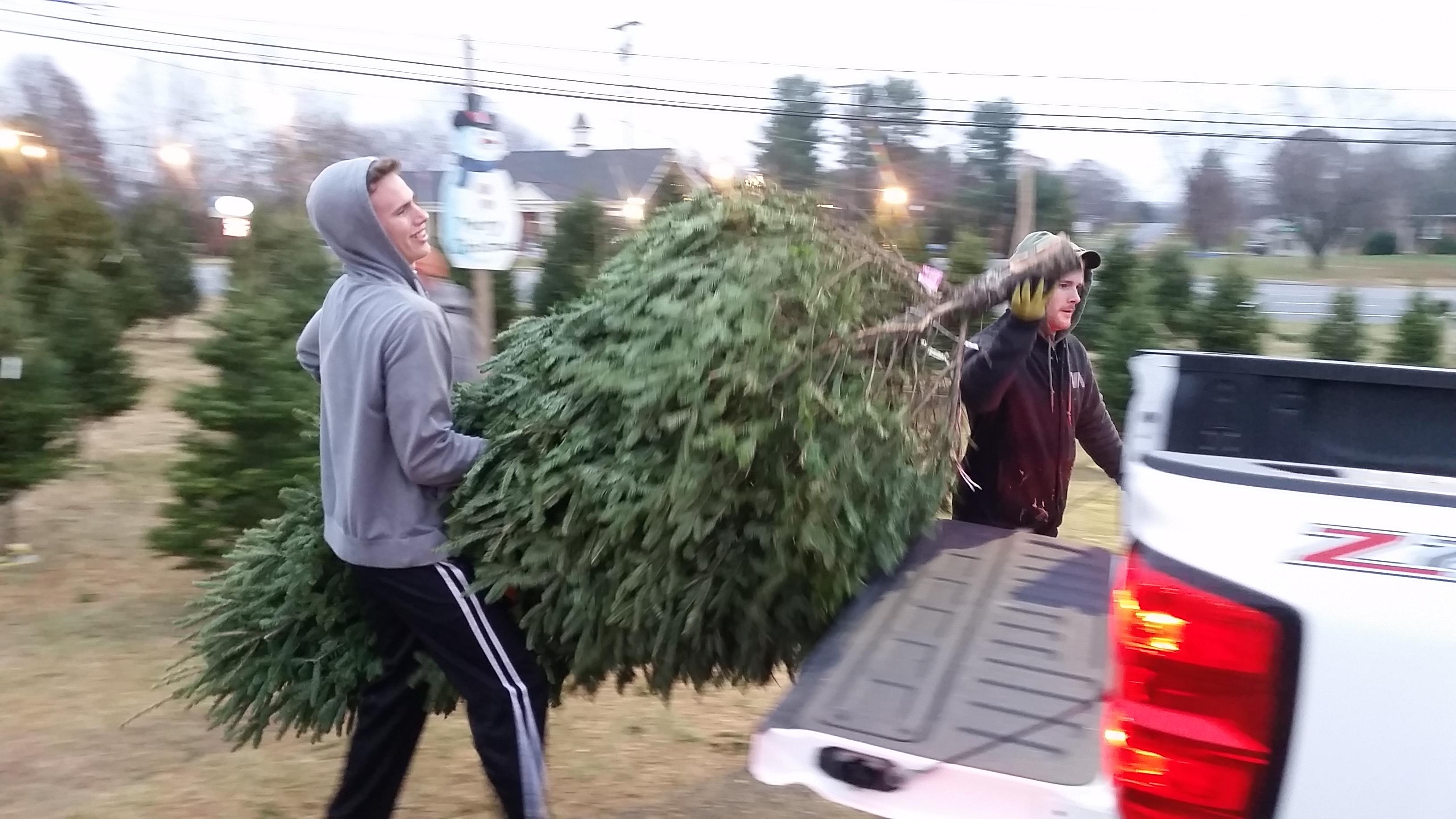 Dave's Maine Christmas Trees And Wreaths, Lynchburg, Virginia